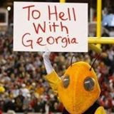 "Buzz, the Georgia Tech yellowjacket mascot, holds up a sign proclaiming ""To Hell With Georgia"""